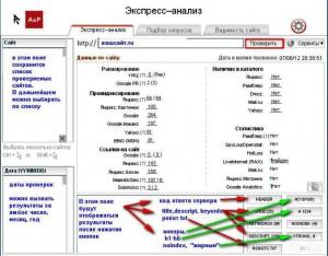 Экспресс-анализ - сайт-аудитор
