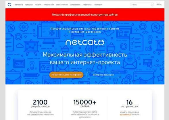 CMS NetCat